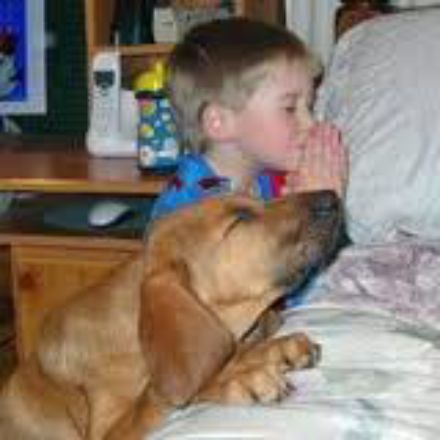 dog saying prayers!